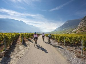 cycle in the alps