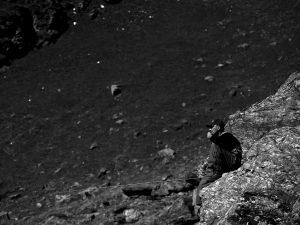 Man sitting with fishing rod