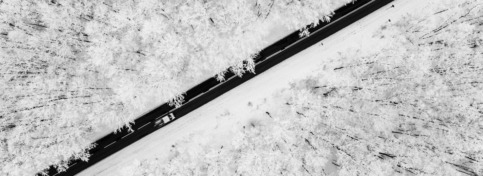 Road running through snowy forest
